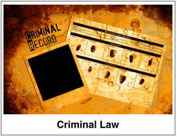 criminal law private investigator